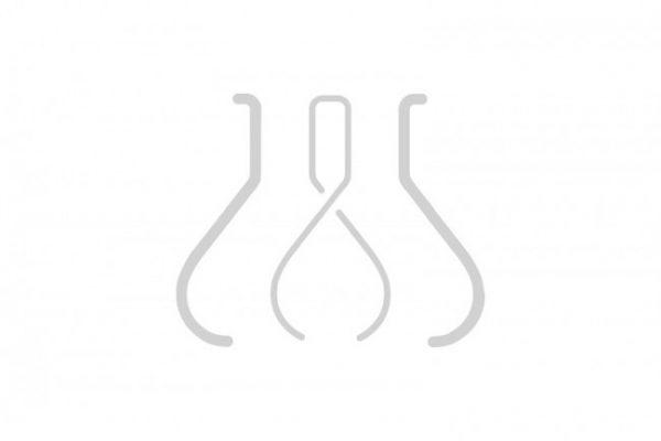 Amphotericin B (10X) Solution