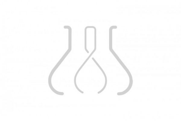 Amphotericin B Solution