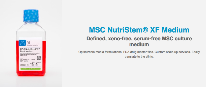 MSC Nutristem mesenchymal stem cells image and description